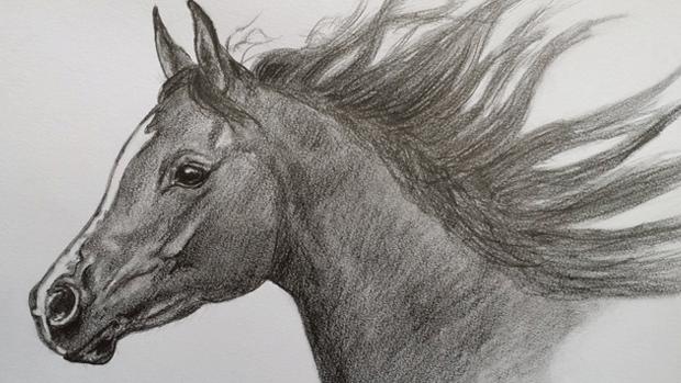 Black-horse-studio-logo