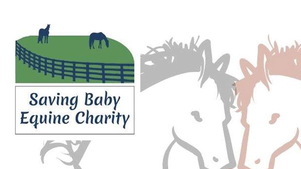 savingbabyequine-logo